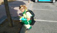 Parla utiliza el sistema de la endoterapia para combatir plagas en los árboles de la ciudad